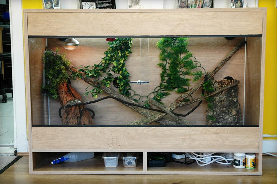 Proxotics Custom Vivarium
